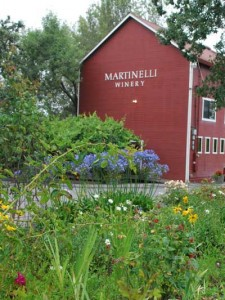 Martinelli-Winery-Tasting-Room-Welcome